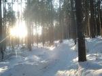 Hardlopen in Neukirchen
