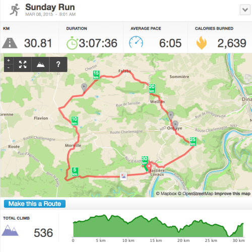 Ardennen-30km-duurloop-screenshot-Runkeeper